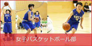 basketball_joshi_2